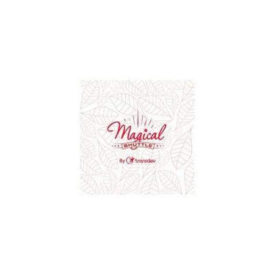 magicalshuttle.co.uk